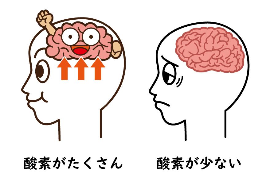 酸素がある脳とない脳